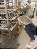 Productie Kortrijkse bibkoekje