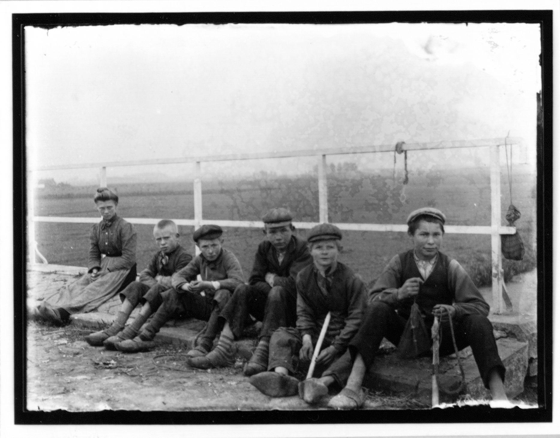 Westflandrica - Jonge Koeiewachters