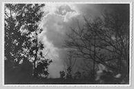 Westflandrica - Wolken