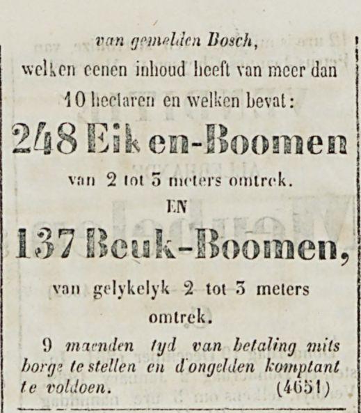 VENDITIE DER Boomen-2