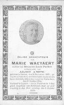 Marie Waeyaert