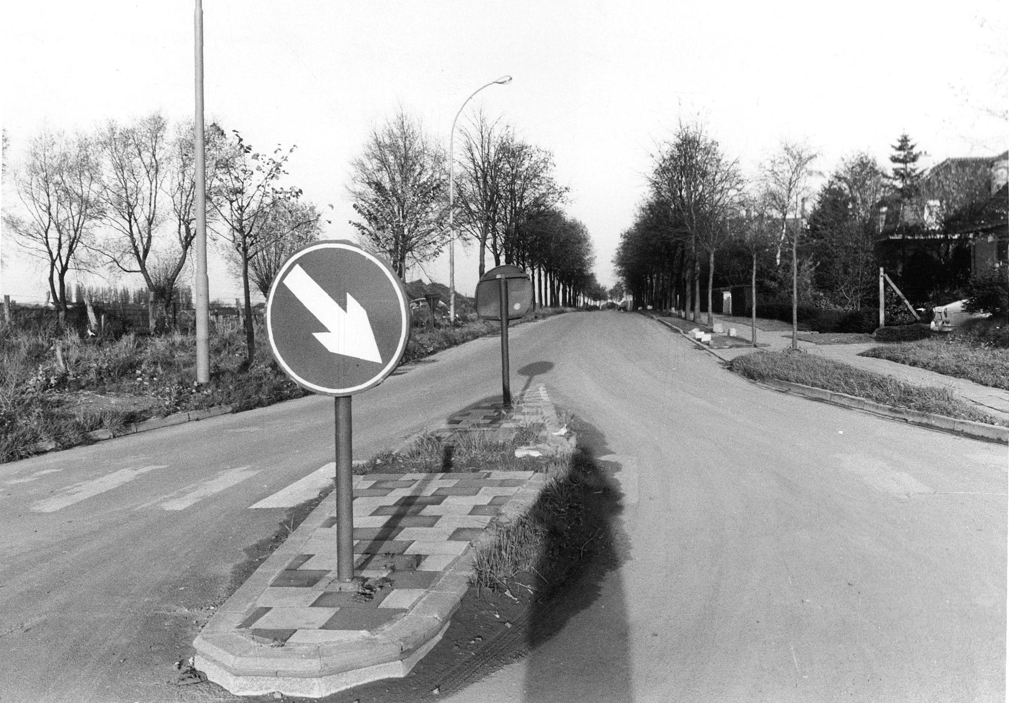 Lindenlaan