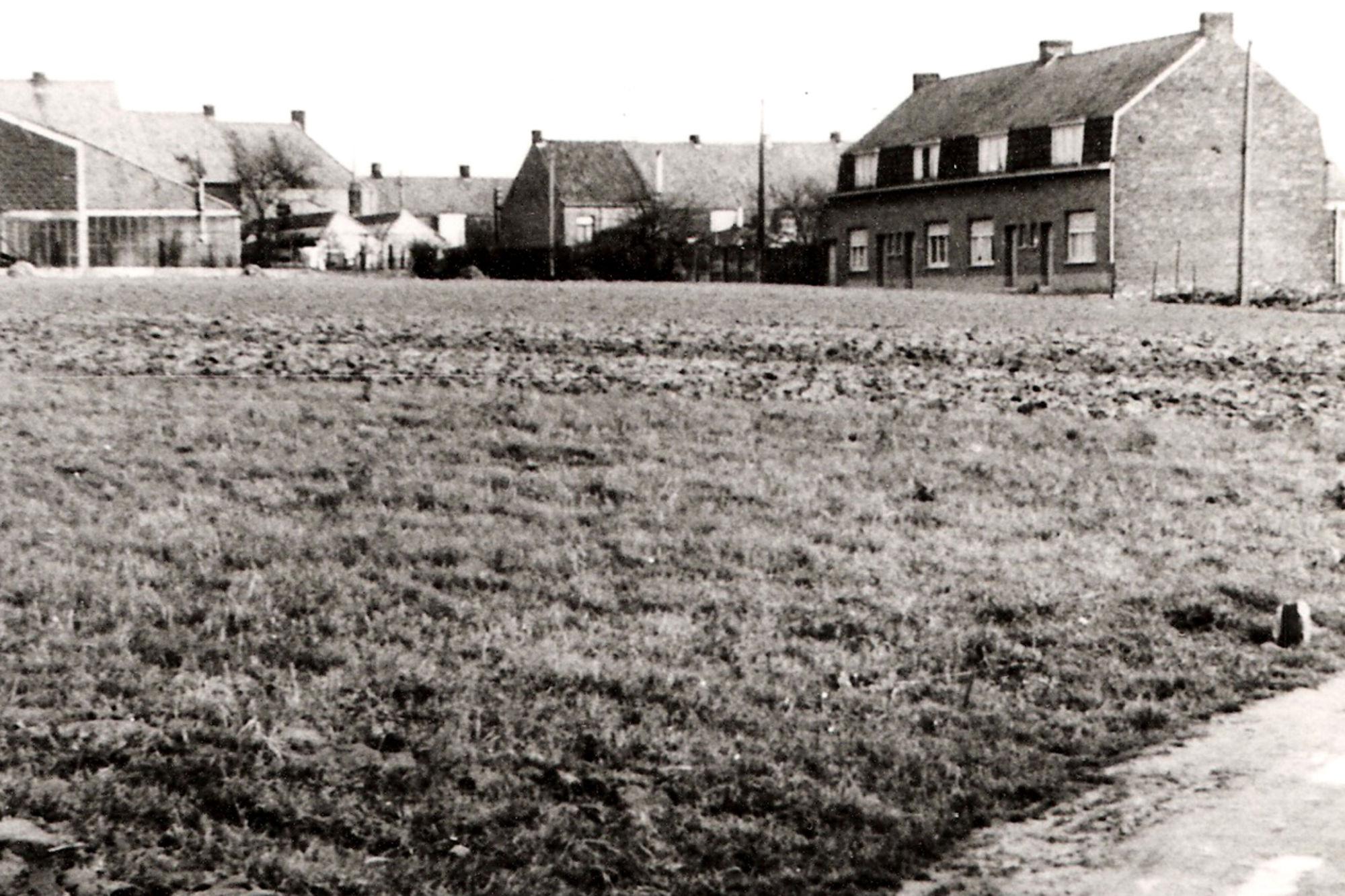 Halewainstraat Marke anno 1952