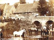 Paarden in de Heulebeek 1906