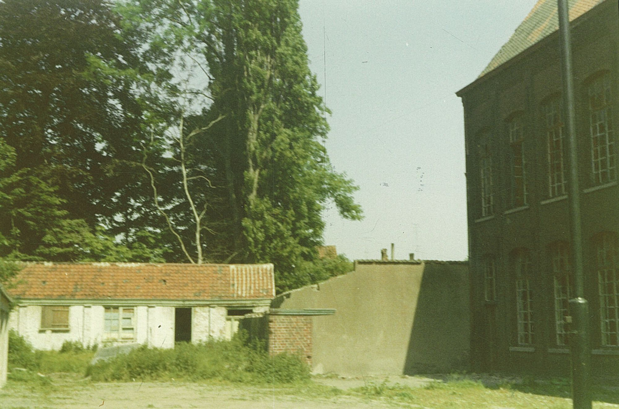 Boerenhol