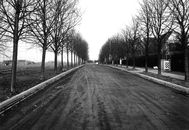Lindenlei (later Lindenlaan) 1965