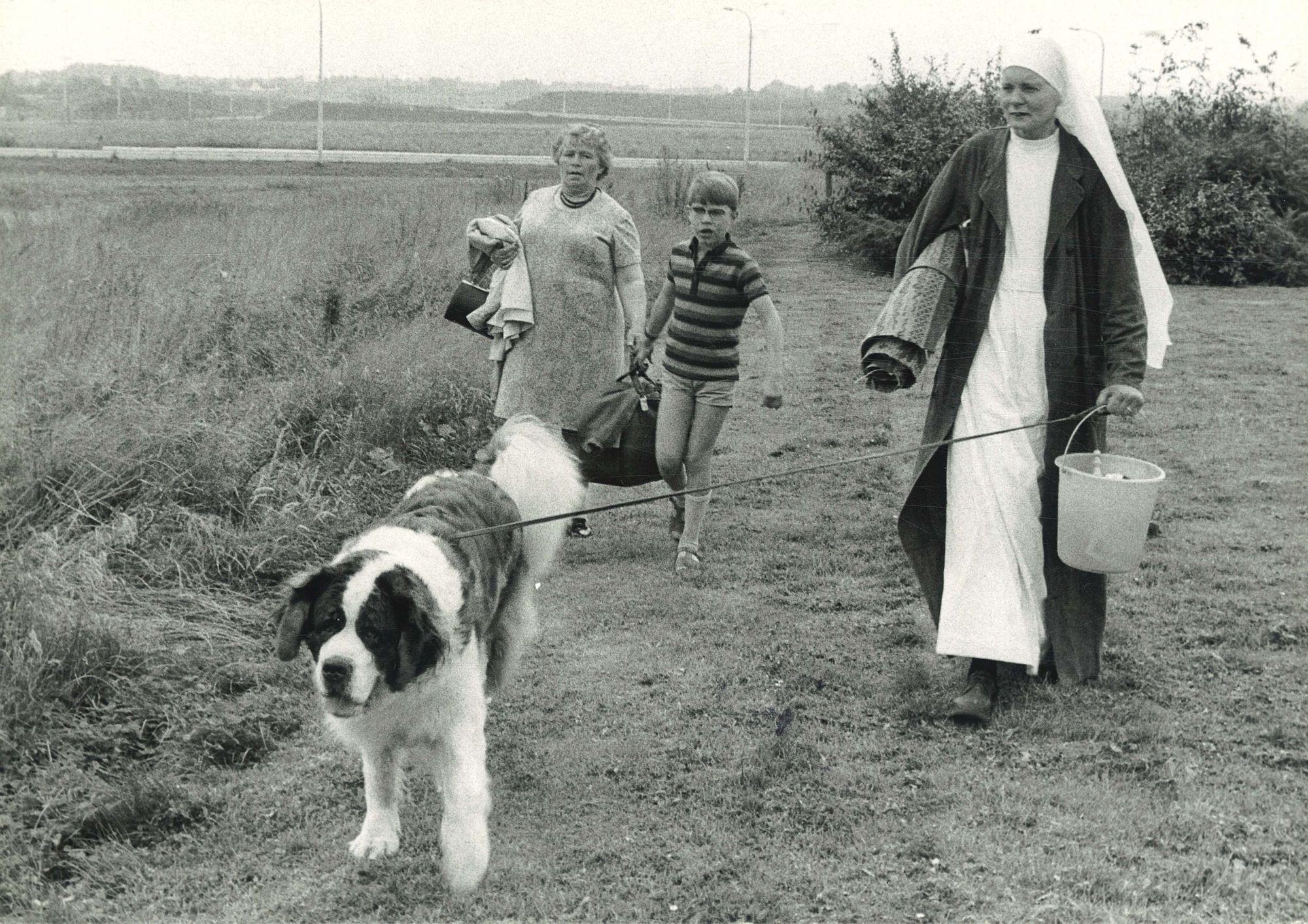Rashondenfestival Kortrijk 1972
