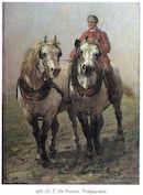 Trekpaarden van Edmond De Pratere